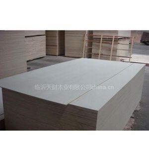 供应各种规格的胶合板优质桦木胶合板信息13053935750