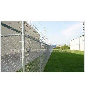 供应热镀锌菱形网/电厂保温网/养殖专用铁丝网