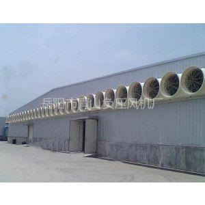 供应湖南岳阳五金注塑车间散热除异味用节能高效大型排风机、抽风机、换气扇