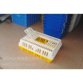 塑料养殖鸡笼子,禽类塑料笼子,塑料鸡笼子优点