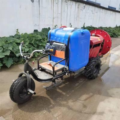 小型手推式打药车 富兴大功率手推式喷雾器 园林高压喷药车