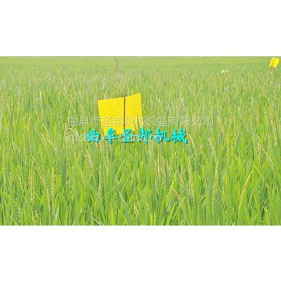 圣邦2016新款双面粘虫板 新型农业植保杀虫黄板