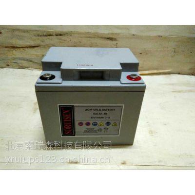 汤浅蓄电池12V24AH总代理