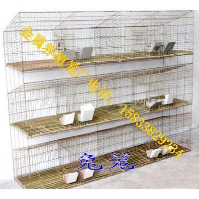 供应我厂专业生产兔笼 种兔笼 养殖兔笼 兔笼价格 兔笼批发价格 镀锌铁丝笼