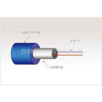 供应探测光缆(用于连接高性能的DTS实现分布式温度测量)
