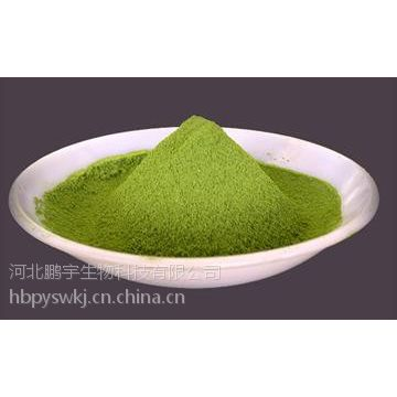 食品级叶绿素铜钠色素生产厂家