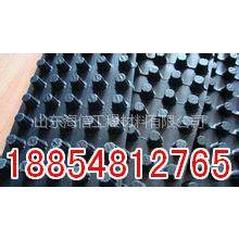 供应忠县排水板销售领先畅销全球历史悠久18854812765