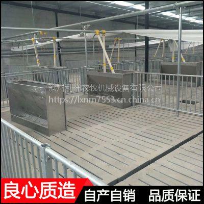 自动料线猪场110米长度1000头育肥猪干料线一套多少钱