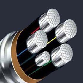 ZCYJLV阻燃铝芯电力电缆 特变线缆厂