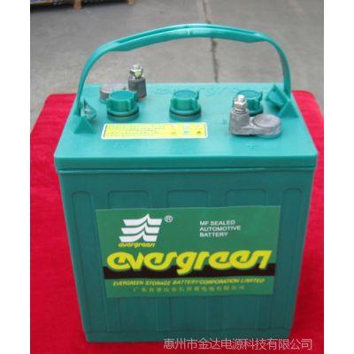 厂家批量供应8V电动高尔夫球车观光浏览车电瓶