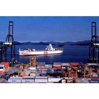 营口到汕头海运船运物流集装箱公司