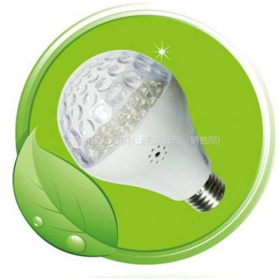 供应LED感应灯,LED红外线感应灯,LED运动感应灯