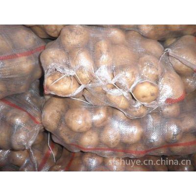 供应内蒙古马铃薯