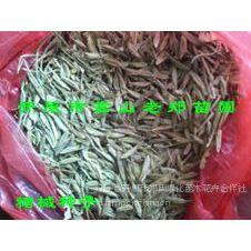 供应辽宁绿化苗木种子|处理苗木种子价格|苗木花卉基地|种植繁育技术【质量保证】批发求购