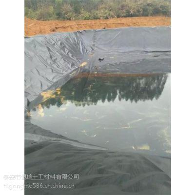 芗城区防渗膜_泰安防渗膜厂家_0.32mm养殖对虾防渗膜