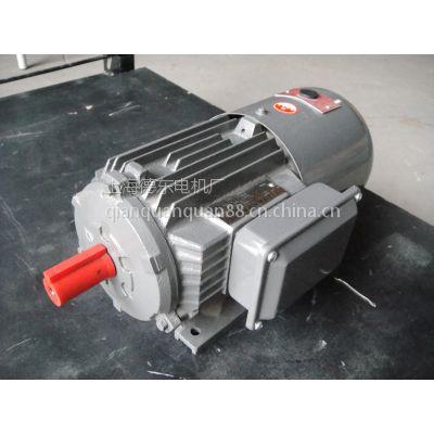 厂家直销 上海德东电机 YEJ2-7134 0.55KW B3 电磁制动电动机