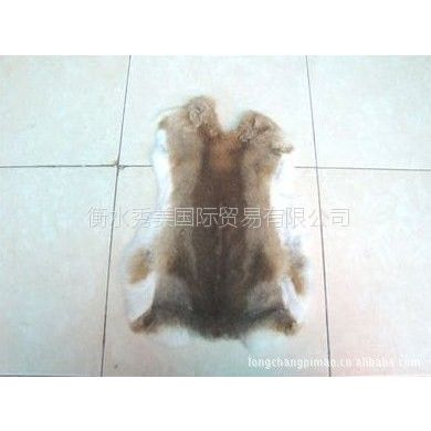批发供应草兔皮、兔皮、家兔皮、野兔皮