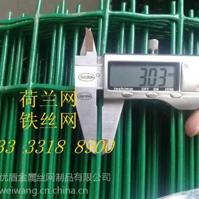 养鸡围栏网 防护网优质产品现货 包塑铁丝围网价格安平优盾焊接浸塑网