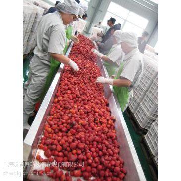 沃迪装备 蓝莓草莓加工设备/蓝莓汁草莓汁生产线