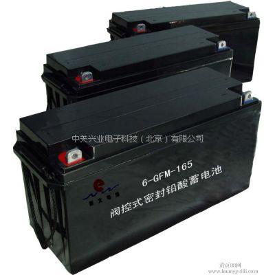 新太蓄电池6-GFM-65现货直发 参数及尺寸