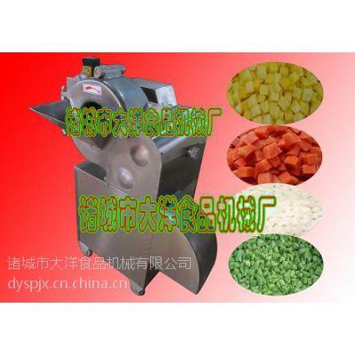 供应果蔬切粒机,水果切粒机