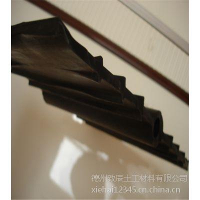腻子钢板300-6mm止水带防渗抗氧化