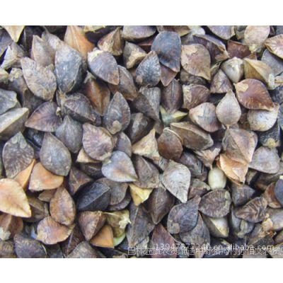 荞麦  价格  批发   原粮  赤峰  东北荞麦