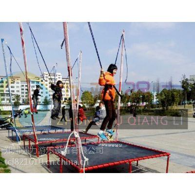 儿童蹦极、【儿童蹦极】、强力游乐设备专业制造(图)
