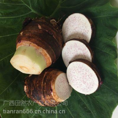 新鲜正宗荔浦芋头 香芋 槟榔芋 礼品芋 约3斤/个 产地直供