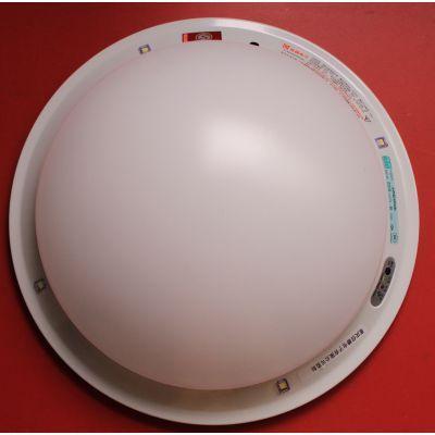 信德电子 厂家直销 消防应急吸顶灯 消防应急LED吸顶灯