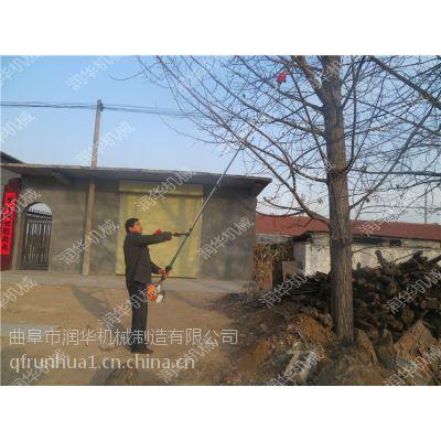 柳条修剪高枝锯 园艺整形修枝机 树枝切割用汽油锯