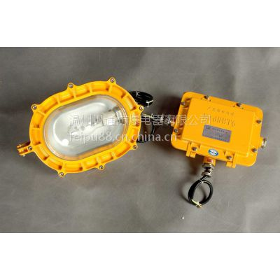 供应BFC8120内场强光防爆灯
