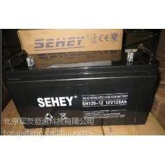 西力蓄电池SH38-12报价/直销