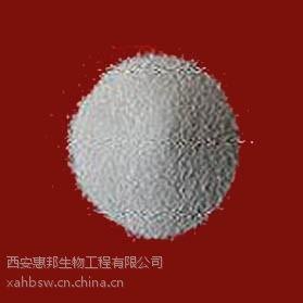 供应国标工业保险粉 印染漂白粉保险粉厂家批发高纯度优质保险粉