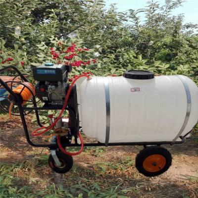 启航牌雾化均匀农用灭虫打药机 新款高压管打药机 自走式果树杀虫喷雾器