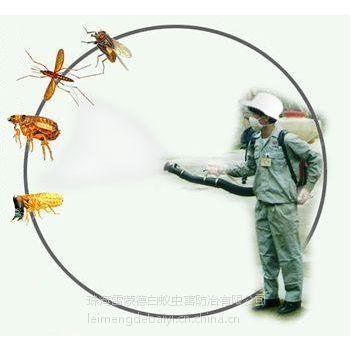 供应珠海杀虫灭鼠 珠海除白蚁 除四害