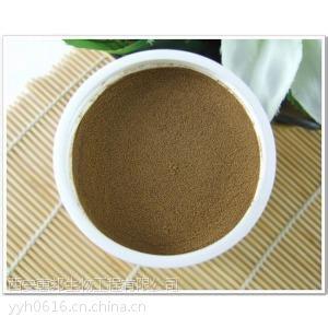 银杏叶提取物 纯天然植物提取物 24%黄酮 6%内脂 厂家低价供应