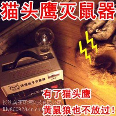 供应猫头鹰电子灭鼠器,AY-D6 高效率灭老鼠适合养殖场、超市灭老鼠