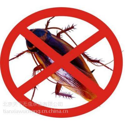 天下无虫(在线咨询)、回龙观灭虫公司、正规灭虫公司