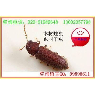 供应番禺蛀虫灭治 番禺地区蛀虫灭治