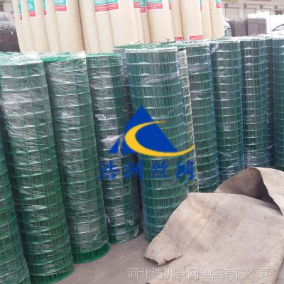 浩洲养鸡场 铁丝网围栏网/圈地养殖绿色荷兰网/浸塑荷兰网哪里有卖