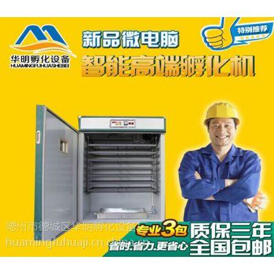 山东华明品牌家用小型全自动孵化机 货到付款全国包运