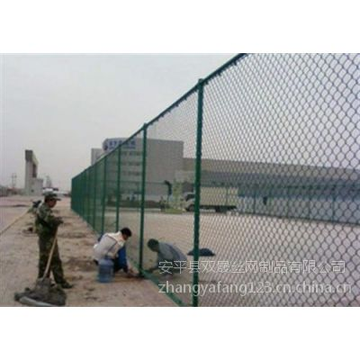 双晟生产厂家供应球场专用绿色筛网批发