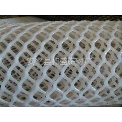 供应长春养鸡网 鸡床网 养鸭网 鸭床网 水产养殖网 塑料平网 路基网 汽车坐垫 空调网