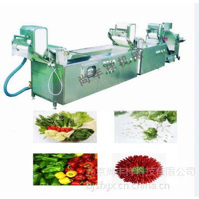 台湾百合清洗机STW-306蔬菜清洗机,中央厨房设备