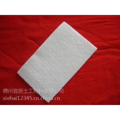 土工织物涤纶短纤无纺300g土工布