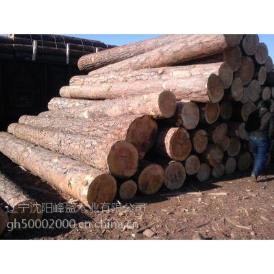 供应辽宁沈阳的樟松原木板材木方