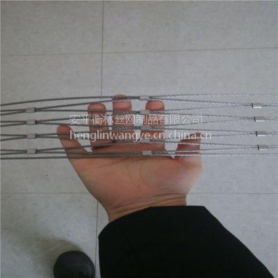 304 动物园防护网 不锈钢绳网厂家供应