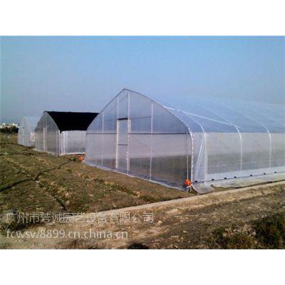 阳江蔬菜大棚建设|蔬菜大棚|芳诚蔬菜大棚