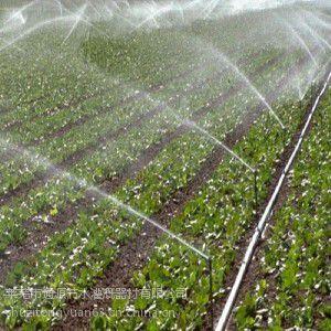 《蓝莓滴灌》《小麦滴灌》《蓝莓滴灌》通源节水灌溉